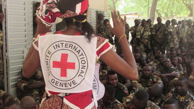 Cameroon: What the ICRC did in 2015