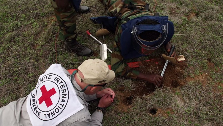 Ethiopia: Demining support is helping people reclaim fields and rebuild their lives