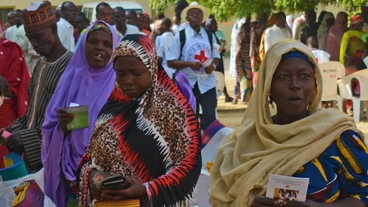 Crisis en Lago Chad: el CICR intensifica la respuesta