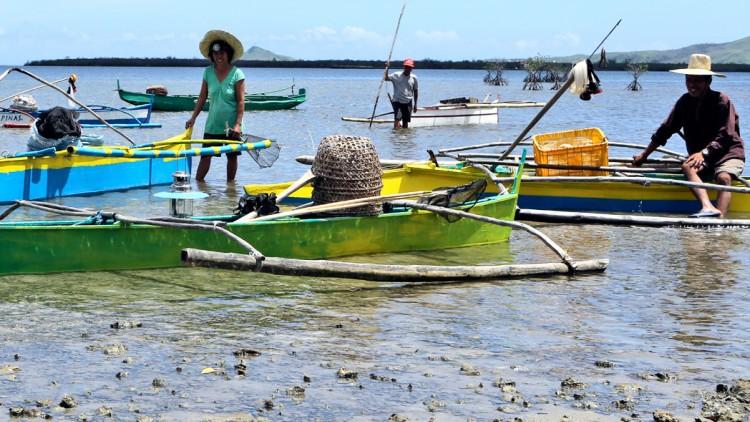 Philippines : gagner sa vie, un an après le passage du typhon Haiyan