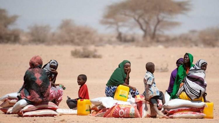 Somália: CICV assiste 240 mil pessoas afetadas pela seca