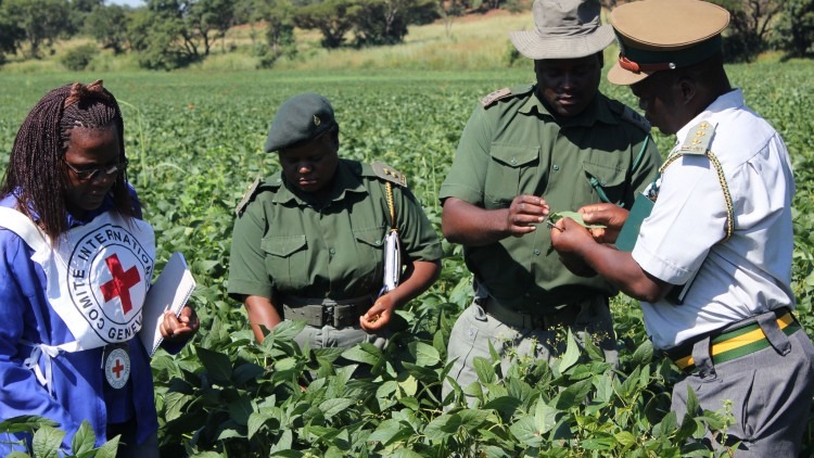 Zimbabwe: Maintaining dignity for thousands of prisoners in 2016