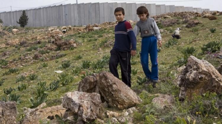 Cinquenta anos de ocupação: para onde vamos?