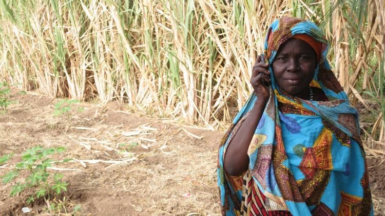 Cuerno de África: ayudar a los refugiados a restablecer el contacto con sus familiares
