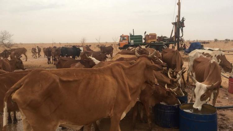 Mauritanie : l'accès à l'eau, un défi de tous les jours