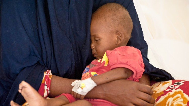 Somalia health news: Nearly 500,000 people received medical help in 2015