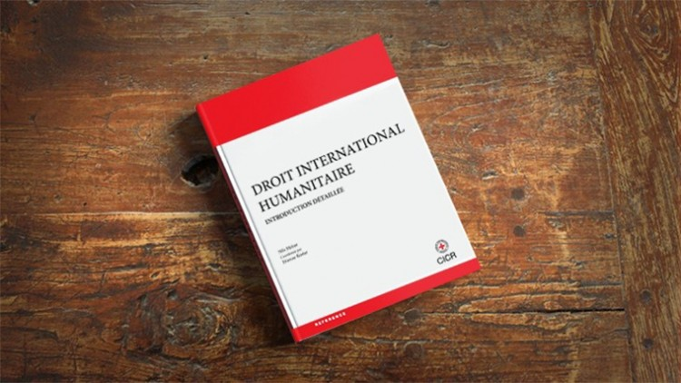 Droit international humanitaire: Introduction detaillée