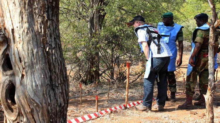 Zimbábue: dupla jornada de trabalho para remoção das minas terrestres