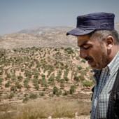 إسرائيل و الأراضي المحتلة
