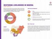 英文图表:2021年在尼日利亚恢复生计