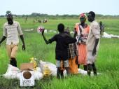 Южный Судан. В настоящее время в Точе (провинция Джонглей) МККК снабжает 3500 семей продовольственными пайками.