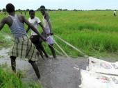 Жители Точа (Южный Судан) тащат мешки с продовольствием, которые МККК сбросил с воздуха.