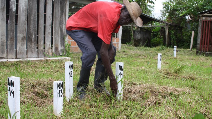 Missing and consigned to oblivion: the tragedy of Colombia's unmarked graves