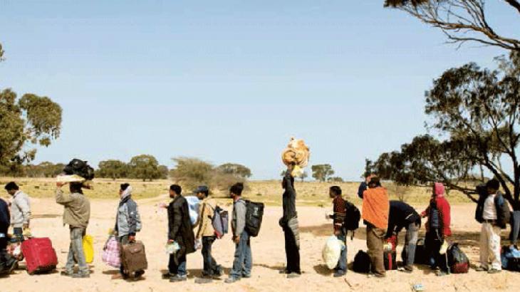 Деятельность в интересах мигрантов