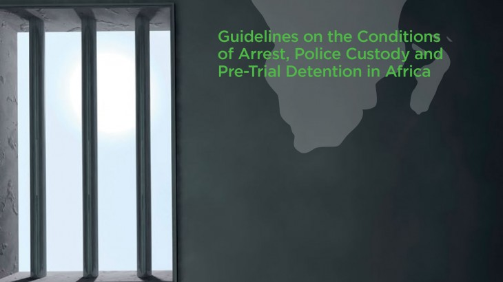 African Union: ICRC delegation meets African Policing Civilians Oversight Forum
