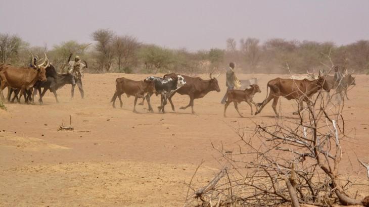 5 choses à savoir sur le Burkina Faso