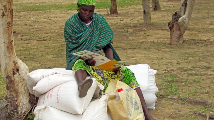 Cameroun : des vivres pour les personnes déplacées et les familles d'accueil