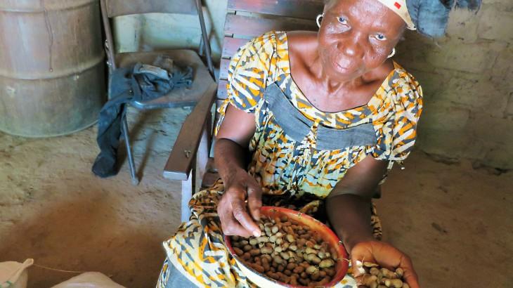 中非共和国:种子带来希望,帮助重建生活