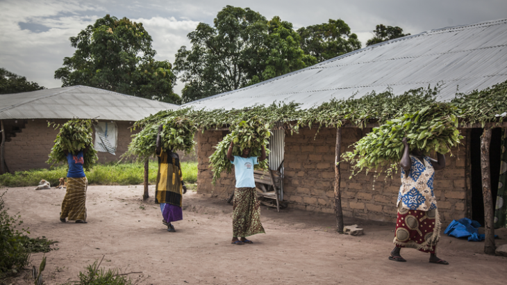 Sénégal : bulletin opérationnel, Casamance - décembre 2016