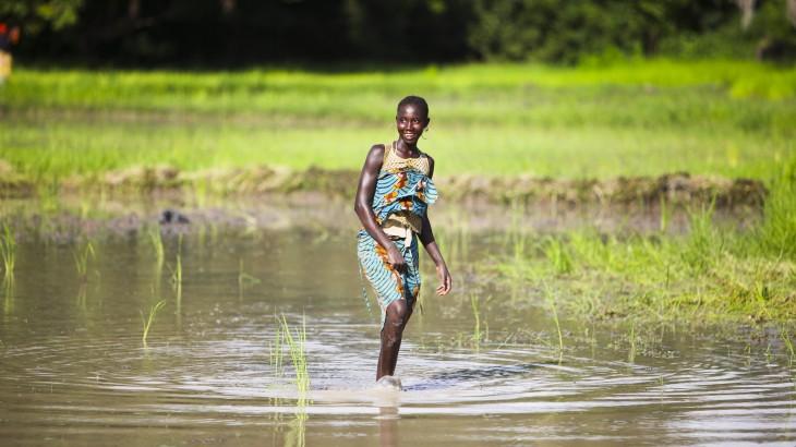 Sénégal : bulletin d'information de nos activités régionales