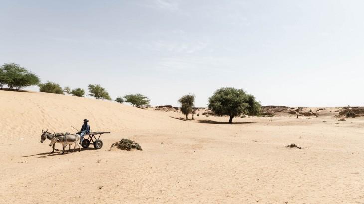 马里-尼日尔:气候变化和冲突在萨赫勒地区行成综合爆发态势