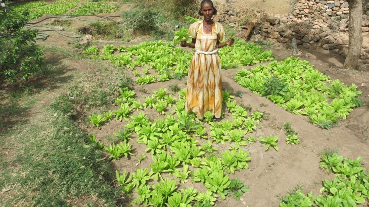 Eritrea: The foot pump that changed the lives of Letina and her family