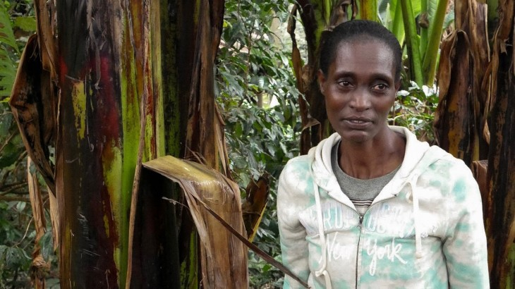 "Ethiopia: ""My house was burnt down and farm destroyed"""