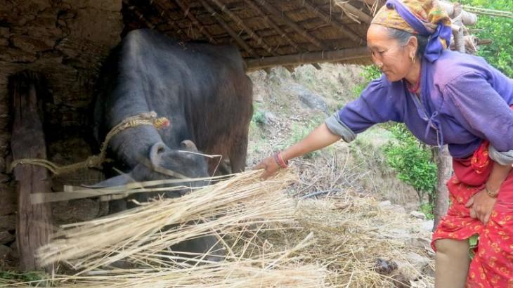 """""""我会更加自信地回来""""—— 尼泊尔地震两年后玛尔门杜的故事"""