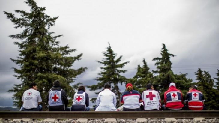 想找新工作?不妨考虑红十字国际委员会或国家红会