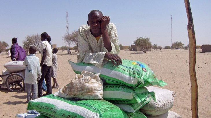 Niger: Displaced persons in Diffa region utterly destitute