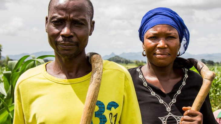 When cows eat crops: Nigeria's fleeing families return to low food stocks