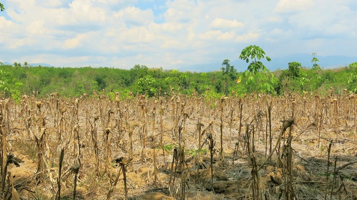 Philippines: Drought-stricken farmers in North Cotabato receive food