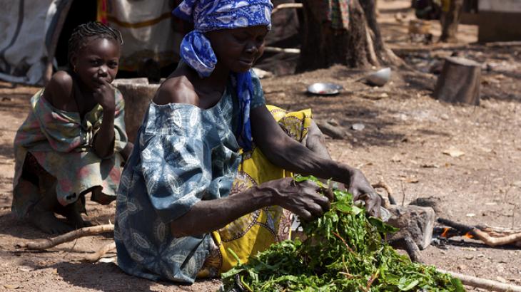 République centrafricaine : l'insécurité à Markounda force 7 400 personnes à quitter leur village
