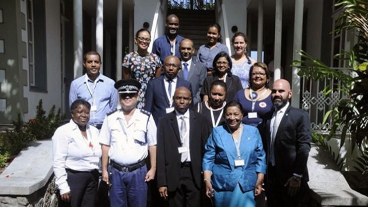 为印度洋岛国打造次区域性国际人道法平台