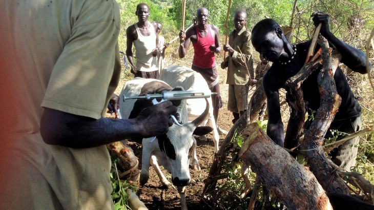 South Sudan: Helping communities stand on their feet again