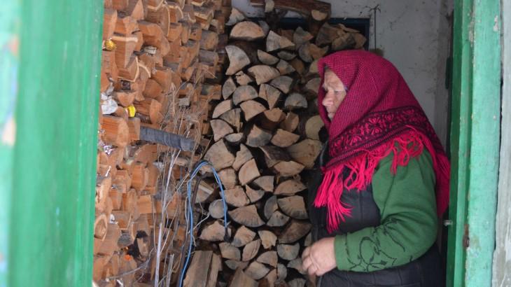 乌克兰:林务员延续百年传统