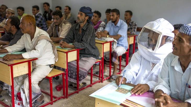 Yemen: Where honeybees improve livelihoods