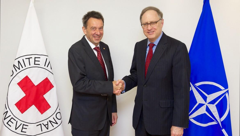 ICRC President Peter Maurer meets the deputy Secretary-General of NATO Alexander Vershbow, 27 May 2015