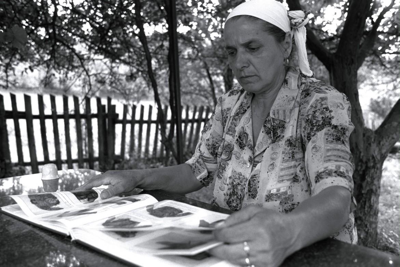 2002年8月,波黑斯雷布雷尼察。