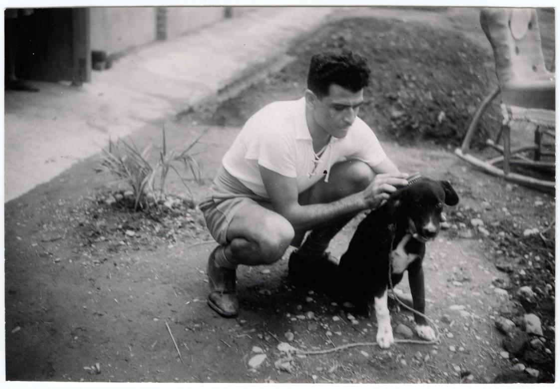 Итальянский военнопленный расчесывает собаку.