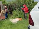 Южная Осетия: бесконтактная доставка помощи во время коронавируса