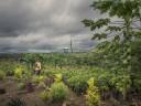 Как решить сложные проблемы экологичными способами?