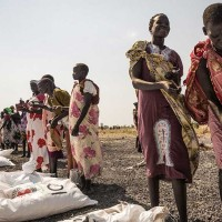 Massive scaling up urgently needed to tackle hunger crisis