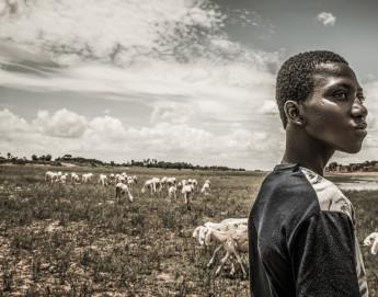 Changement climatique et conflits : un rapport du CICR met en évidence l'impact de ce tandem dévastateur sur les plus vulnérables de la planète