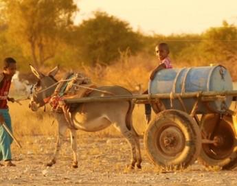 """Сомали: """"Это привилегия - помогать своим соотечественникам"""""""