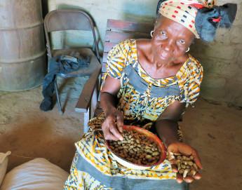 República Centro-Africana: sementes trazem esperança e reconstroem vidas
