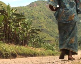 Democratic Republic of the Congo: The survivors