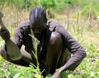 South Sudan: Helping farmers grow their own food