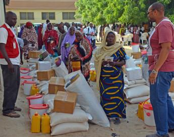 Crise dans la région du lac Tchad : le CICR intensifie son action