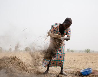 COVID-19: Fighting conflict and coronavirus in Nigeria's Borno